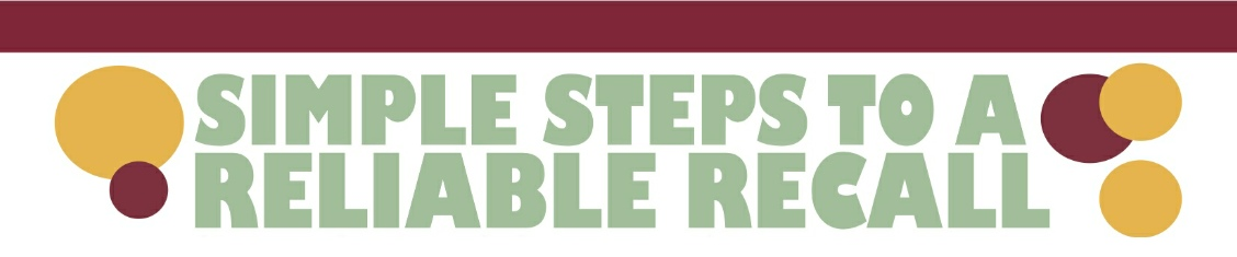 reliable-recall-banner